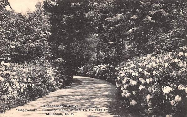 Rhododendron Drive Millbrook, New York Postcard