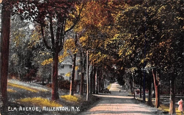 Elm Avenue Millerton, New York Postcard