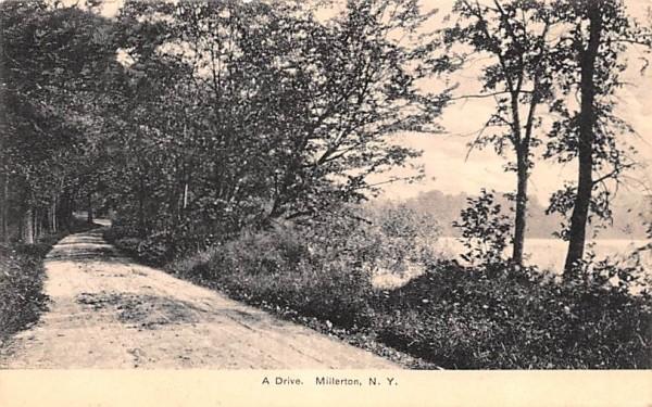 A Drive Millerton, New York Postcard