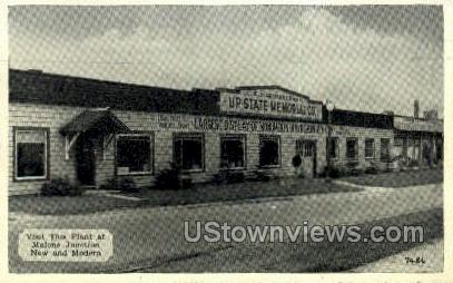 UP State Memorial Co. - Malone, New York NY Postcard