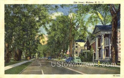 Elm Street - Malone, New York NY Postcard