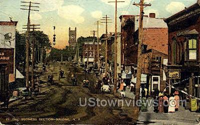 The Business Section - Malone, New York NY Postcard