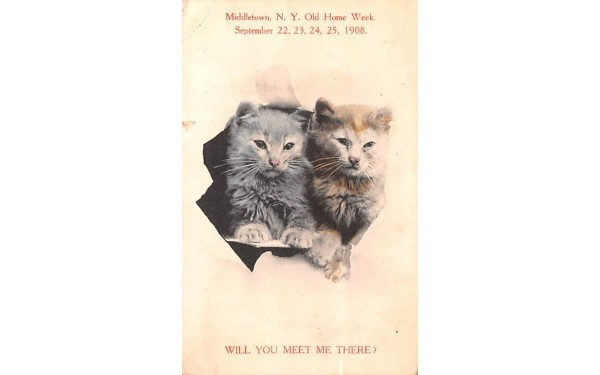 Old Home Week, Sept 22, 23, 24, 25, 1908 Middletown, New York Postcard