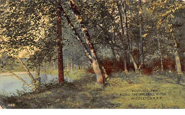 Woodland Path Middletown, New York Postcard