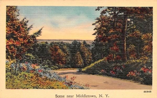 Scene Middletown, New York Postcard