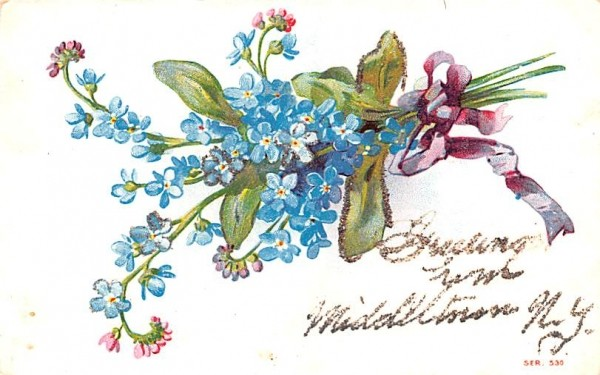 Flowers Middletown, New York Postcard