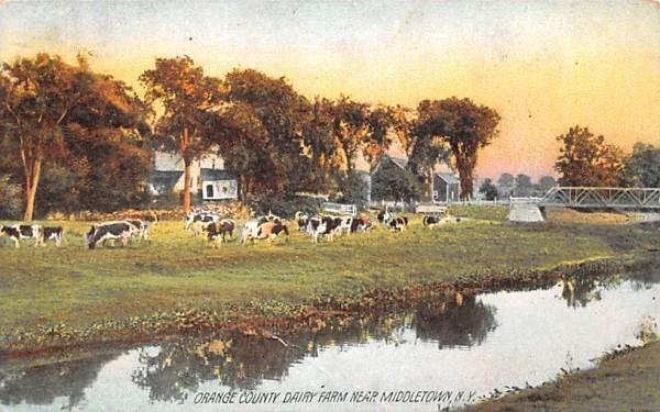 Orange County Dairy Farm Middletown, New York Postcard