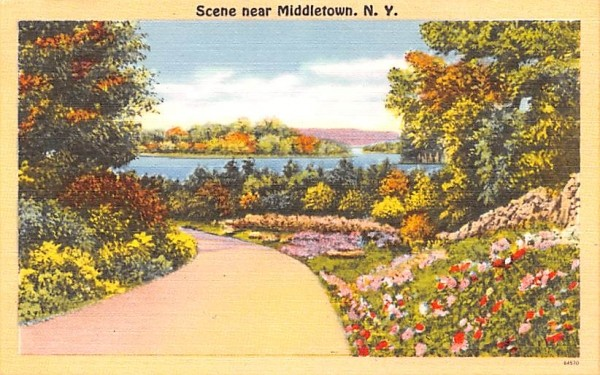 Road Scene Middletown, New York Postcard
