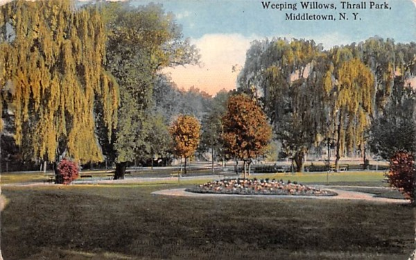 Weeping Willows Middletown, New York Postcard
