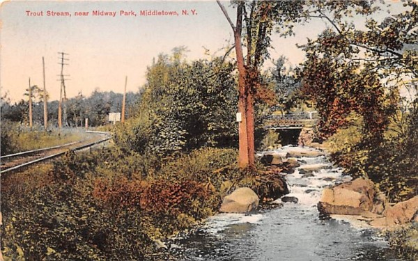 Trout Stream Middletown, New York Postcard