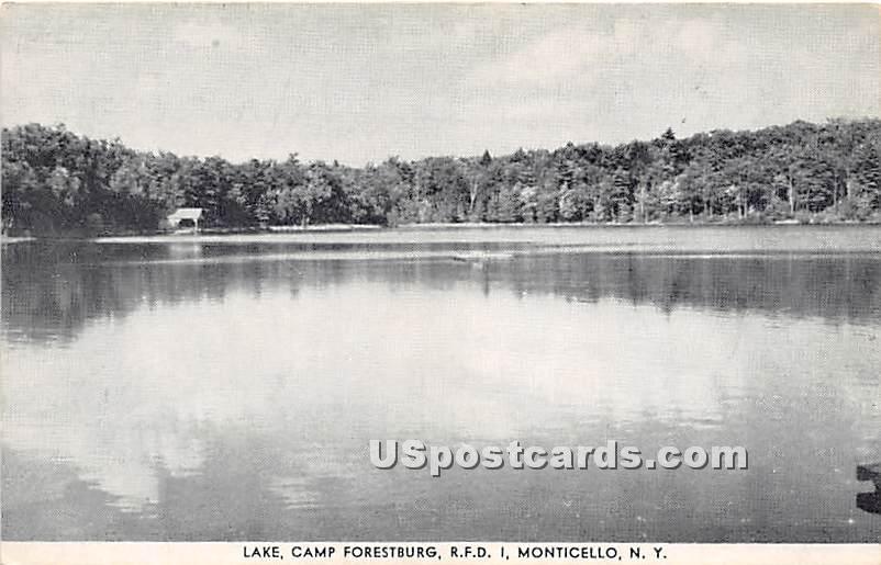 Lake, Camp Forestburg, RFDI - Monticello, New York NY Postcard