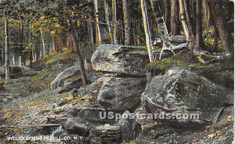 Indian Spring - Misc. Sullivan County, New York NY Postcard