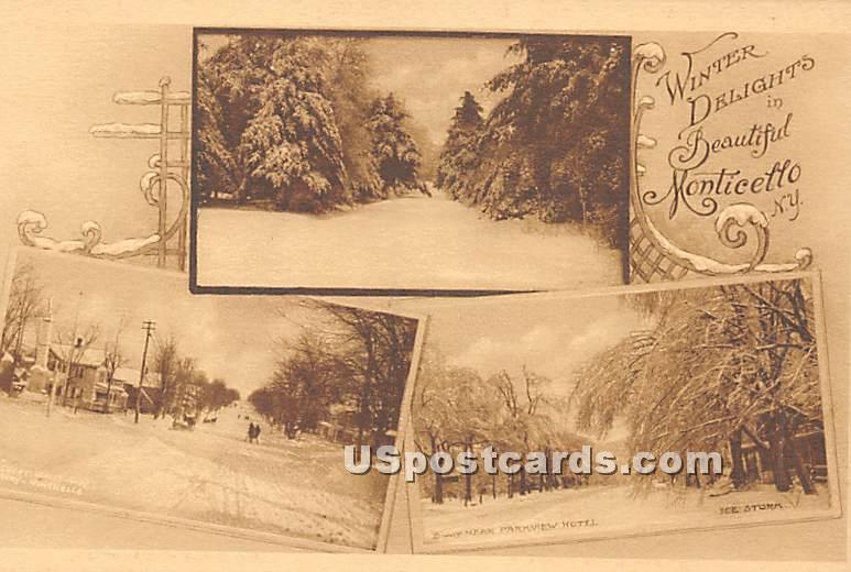 Winter Delights - Monticello, New York NY Postcard