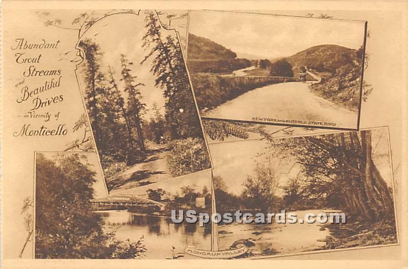 Abundant Trout Streams - Monticello, New York NY Postcard