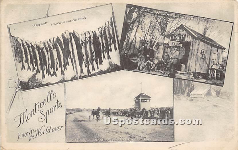Monticello Sports - New York NY Postcard