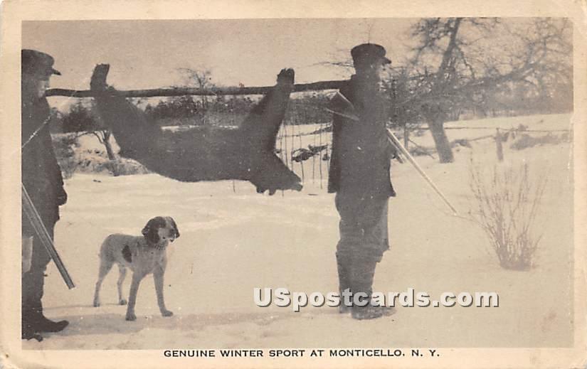 Genuine Winter Sport Bear - Monticello, New York NY Postcard