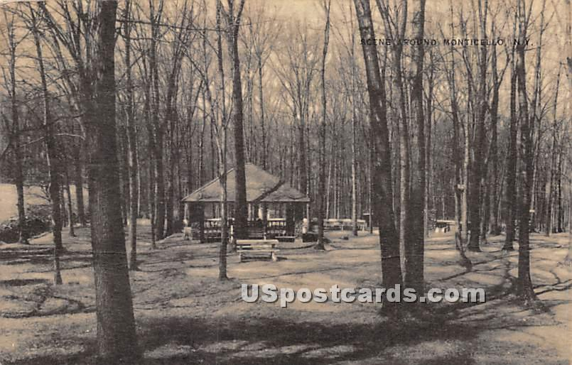Park Scene - Monticello, New York NY Postcard