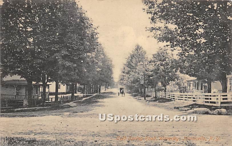 Spring Road - Monticello, New York NY Postcard