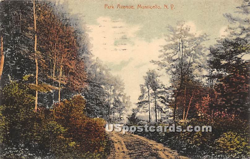 Park Avenue - Monticello, New York NY Postcard