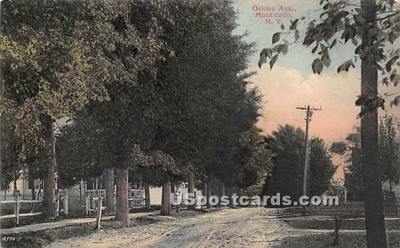 Oakley Avenue - Monticello, New York NY Postcard