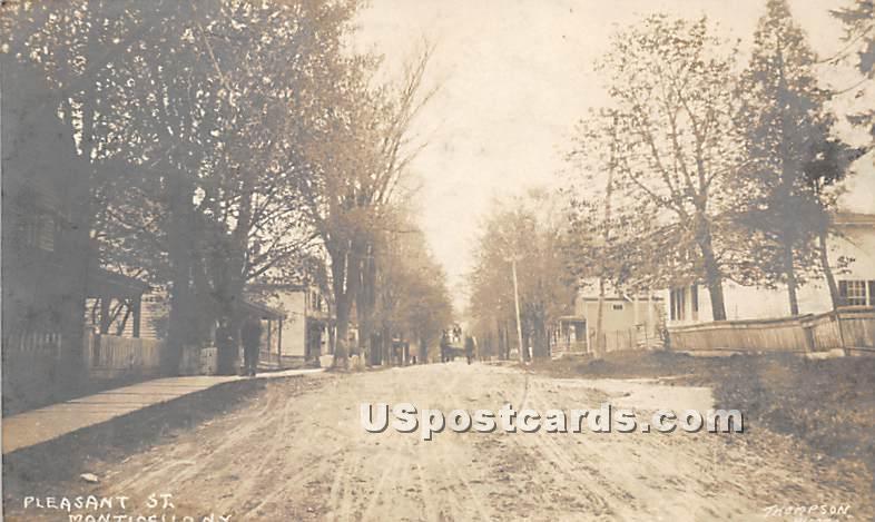 Pleasant Street - Monticello, New York NY Postcard
