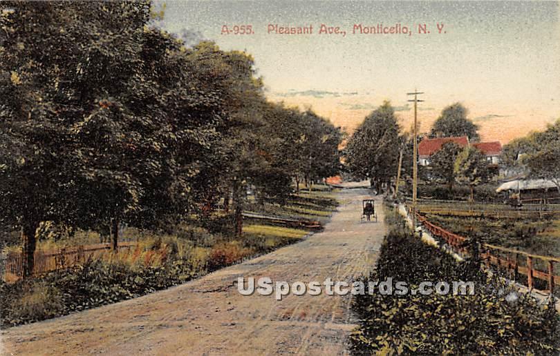 Pleasant Avenue - Monticello, New York NY Postcard