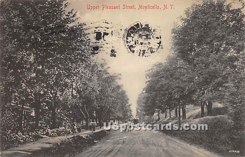 Upper Pleasant Street - Monticello, New York NY Postcard
