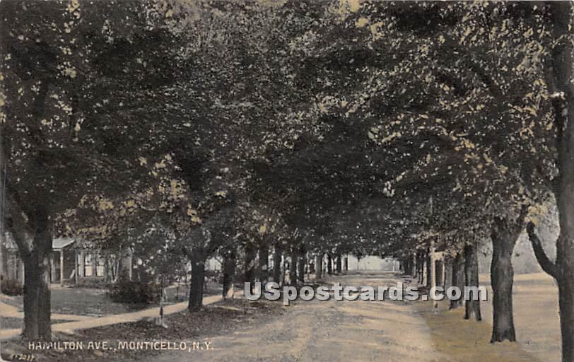 Hamilton Avenue - Monticello, New York NY Postcard