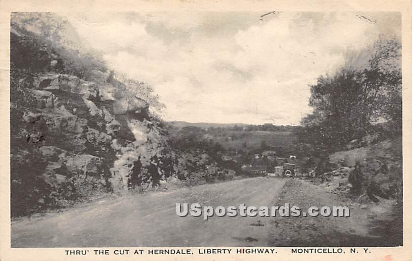 Thru the Cut at Herndale - Monticello, New York NY Postcard
