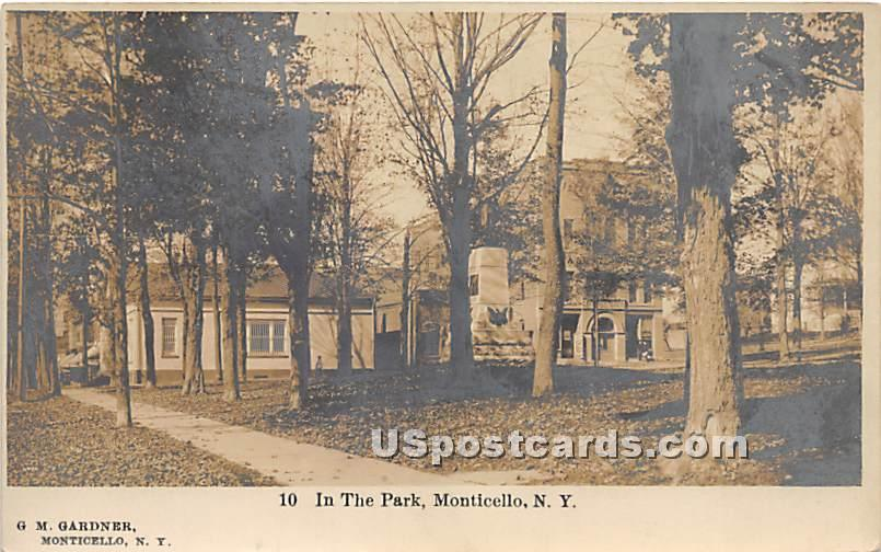 In the Park - Monticello, New York NY Postcard