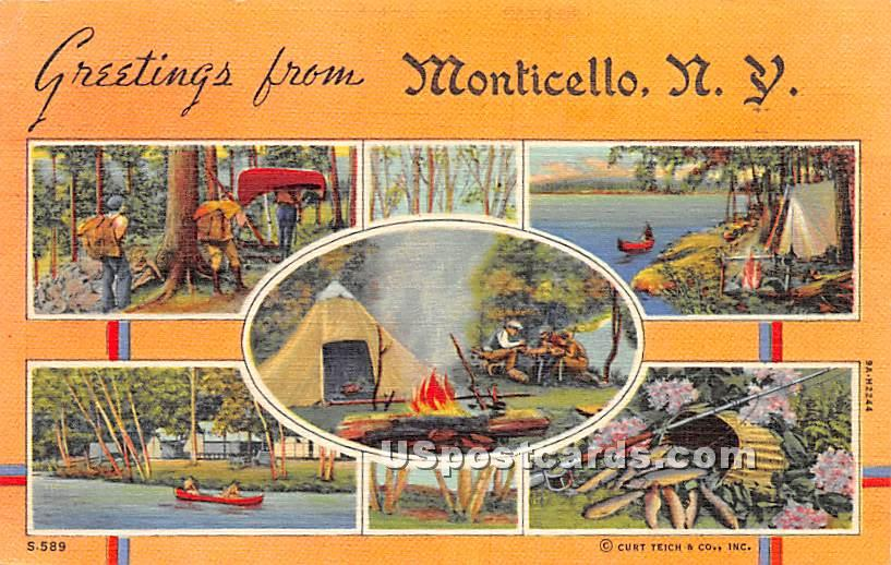Greetings from - Monticello, New York NY Postcard