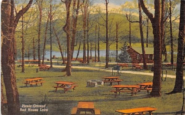 Picnic Ground Mayville, New York Postcard