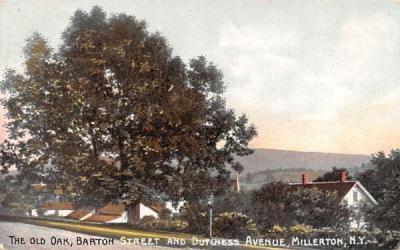 The Old Oak Millerton, New York Postcard