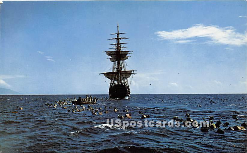 Capt Bligh Adrift, New Shea Stadium - Misc, New York NY Postcard