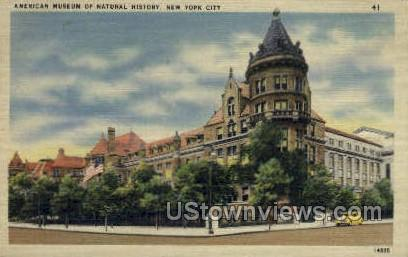 Museum of Natural History - New York City Postcards, New York NY Postcard