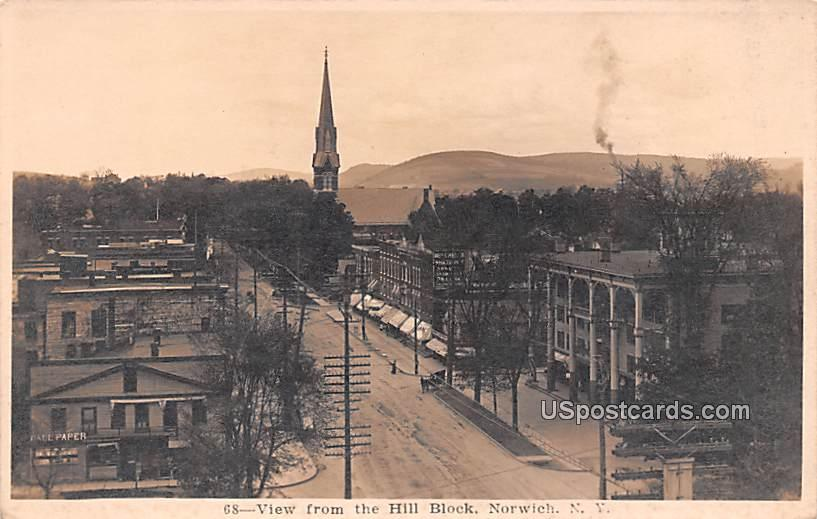 View from the Hill Block - Norwich, New York NY Postcard