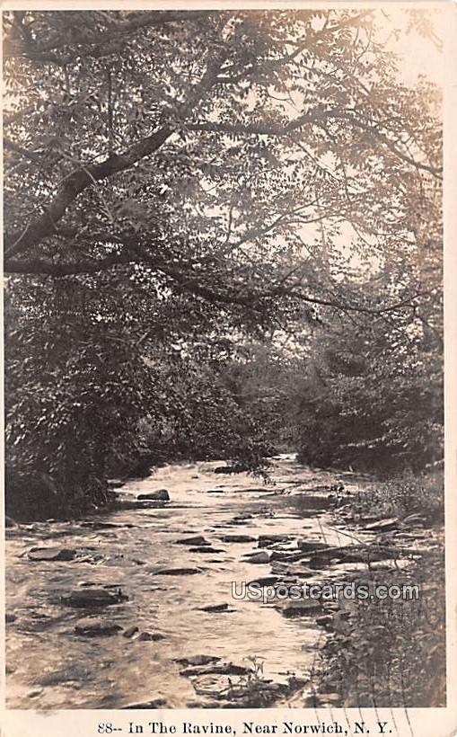 In the Ravine - Norwich, New York NY Postcard