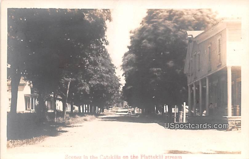 Scenes in Catskills - New Kingston, New York NY Postcard