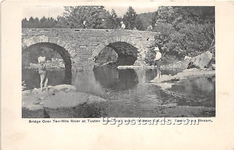 Bridge Over Ten Mile River - Narrowsburg, New York NY Postcard