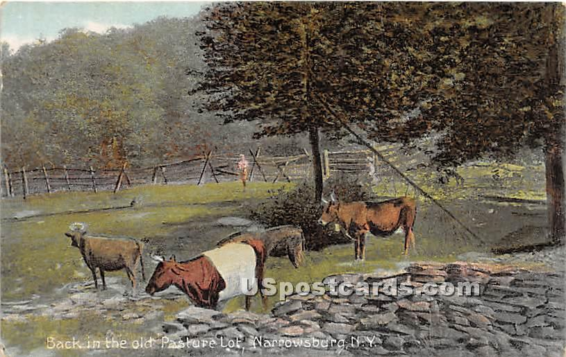 Back in the Old Pasture Lot - Narrowsburg, New York NY Postcard