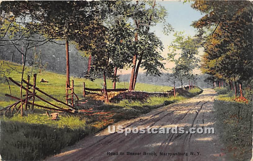 Road to Beaver Brook - Narrowsburg, New York NY Postcard