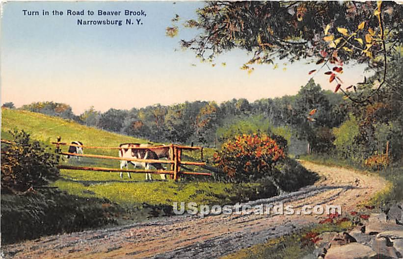Turn in the Road to Beaver Brook - Narrowsburg, New York NY Postcard