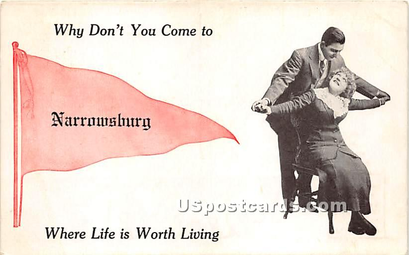Why Don't You Come - Narrowsburg, New York NY Postcard
