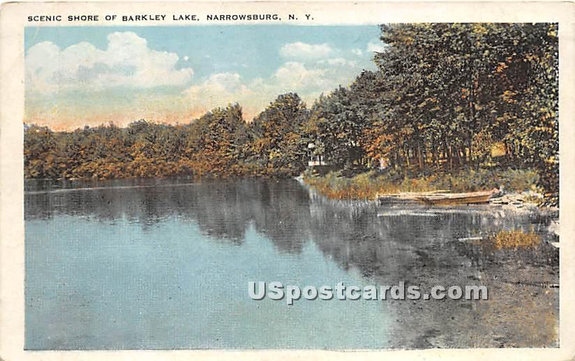Scenic Shore of Barkley Lake - Narrowsburg, New York NY Postcard