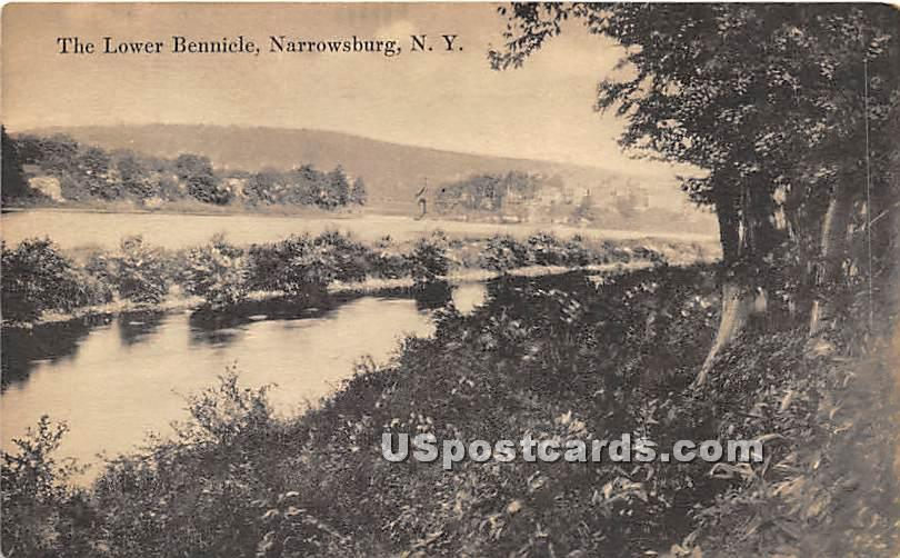 The Lower Bennicle - Narrowsburg, New York NY Postcard