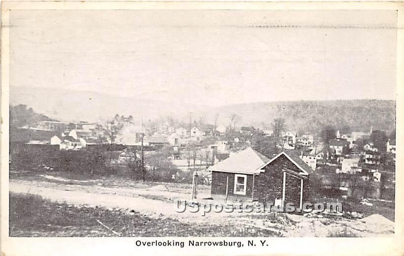 Overlooking - Narrowsburg, New York NY Postcard