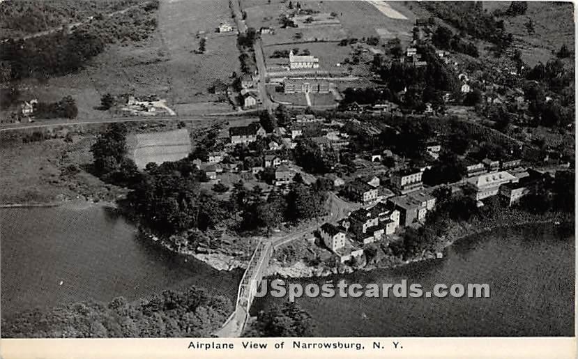 Airplane View - Narrowsburg, New York NY Postcard