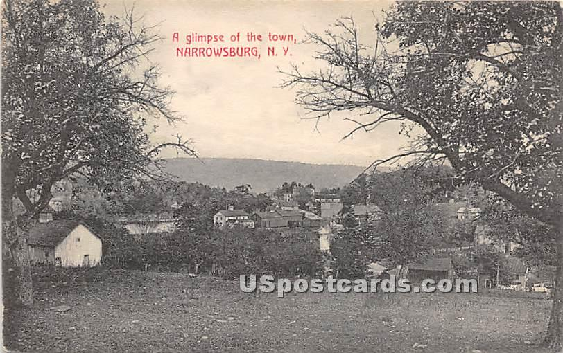 Glimpse of the Town - Narrowsburg, New York NY Postcard
