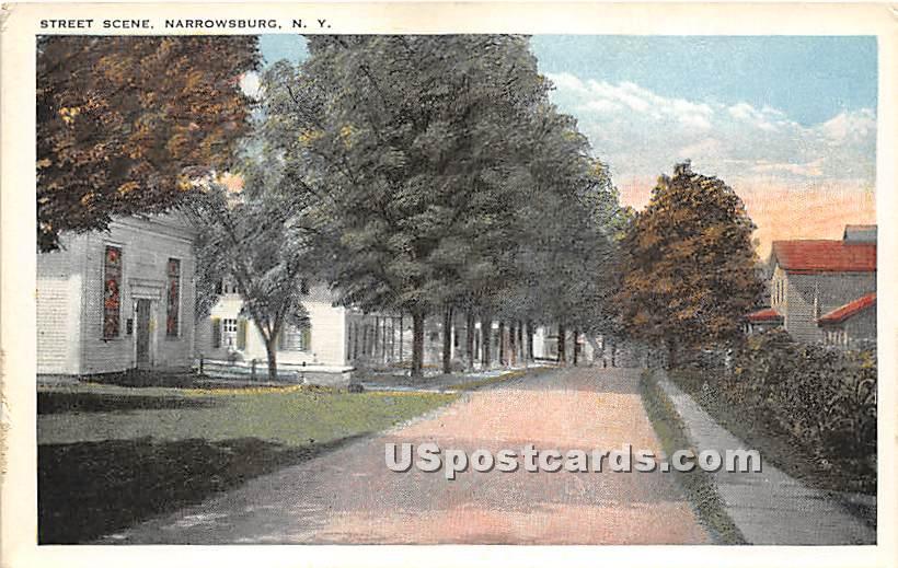 Street Scene - Narrowsburg, New York NY Postcard