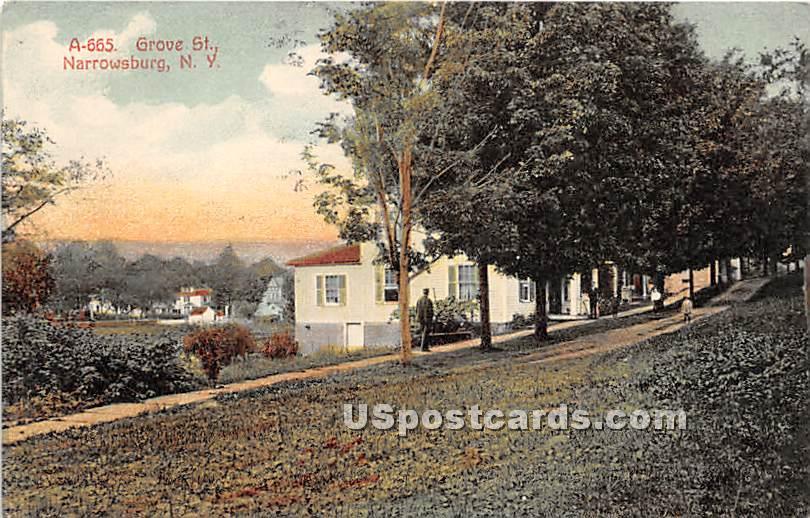 Grove Street - Narrowsburg, New York NY Postcard